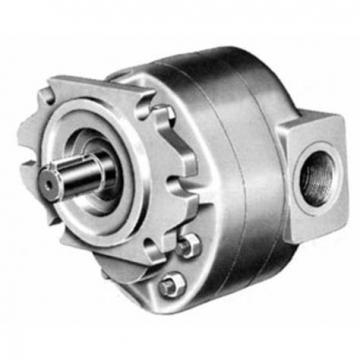 Replacement Dension Vane Pump T6c, 03, 05, 06, 08, 10, 12, 14, 17, 20, 22, 25, 28, 31