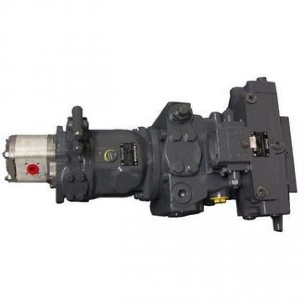 Rexroth A4vg125 A4vg250 Hydraulic Pump Spare Parts for Engine Alternator Cylinder Block, Piston, Valve Plate, Retainer Plate, Shaft, Swash Plate #1 image