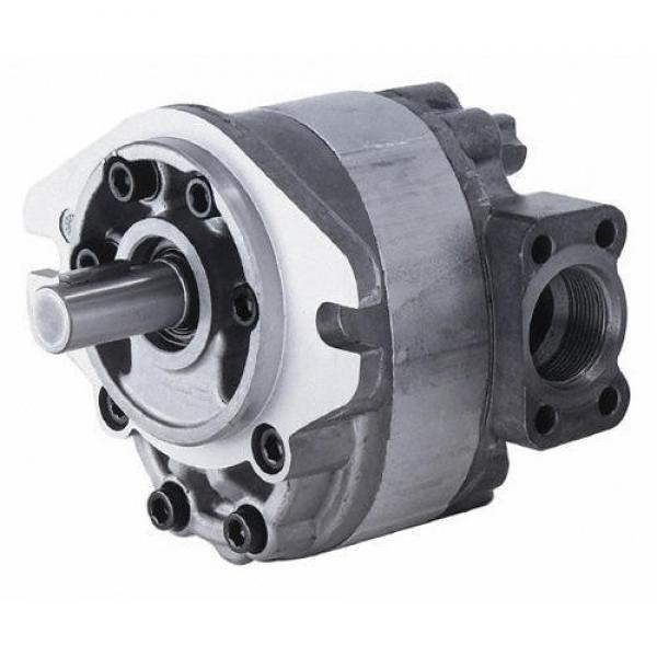 PARKER PGP511 PGP517 Hydraulic Gear Pump #1 image